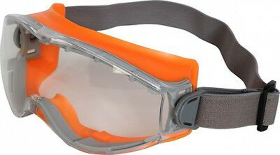 Picture of SG10 Caspian Indirect Vent Goggle