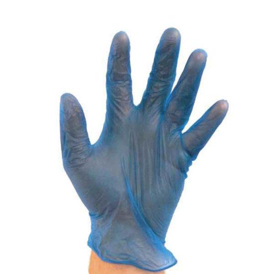 Bodytech Vinyl PF Gloves, Blue, 1000/Case
