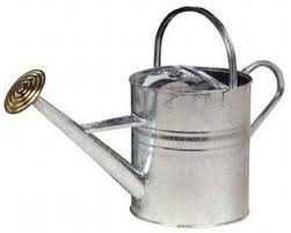 Galvanised, Watering Can, 2 Gallon