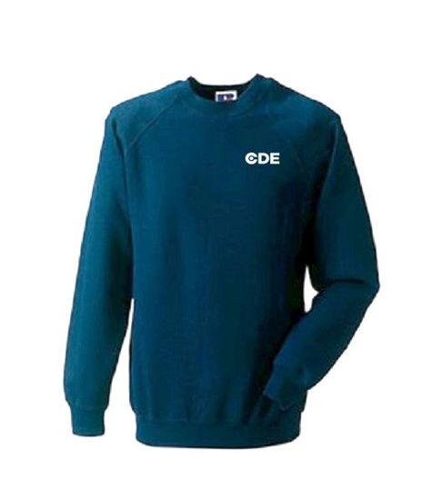 Picture of Men's Navy Sweatshirt with Logo